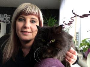 Katzenbetreuung